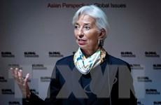 IMF kêu gọi EU tăng cường năng lực quản lý để chuẩn bị cho Brexit