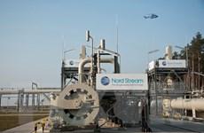 Mỹ muốn ngăn chặn việc xây dựng Dòng chảy phương Bắc 2
