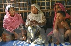 Tổng thư ký LHQ và Chủ tịch WB sẽ thăm người tị nạn ở Bangladesh