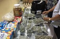 Phát hiện 4kg cần sa giấu tinh vi trong lô hàng gửi từ Mỹ về Việt Nam
