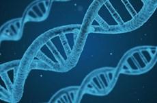 Phát hiện gen C6 góp phần điều trị bệnh ung thư và nhiều bệnh khác