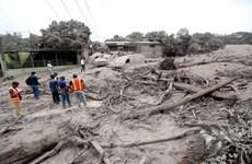 Vụ núi lửa phun trào ở Guatemala: Hơn 330 người vẫn mất tích