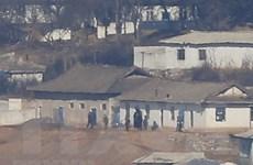 Phó Tổng thư ký LHQ tới Triều Tiên đàm phán về viện trợ lương thực
