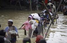 Nhật Bản hỗ trợ Myanmar giải quyết cuộc khủng hoảng người Rohingya