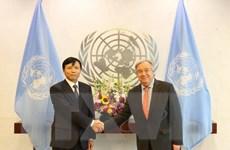Việt Nam tích cực, chủ động tham gia các diễn đàn Liên hợp quốc