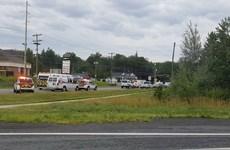 Canada: Bạo lực súng đạn có xu hướng gia tăng sau vụ ở Fredericton