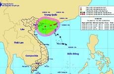 Áp thấp nhiệt đới có thể mạnh thành bão, Bắc Bộ sẽ có mưa rất to