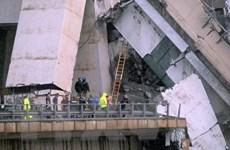 [Photo] Sập cầu cạn ở Italy: Nỗ lực tìm nạn nhân trong đống đổ nát