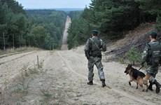 Báo Slovakia: Ba Lan bắt nhóm đưa 12 người Việt Nam nhập cư trái phép