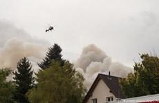 Đức: Cháy rừng nghiêm trọng đe dọa 3 ngôi làng gần thủ đô Berlin