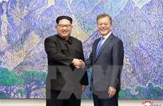 Hàn Quốc đề nghị lãnh đạo các đảng cùng Tổng thống thăm Triều Tiên