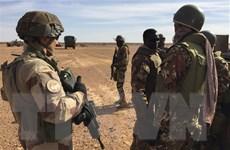Mali: Hàng chục người thiệt mạng trong vụ tấn công gần biên giới Niger