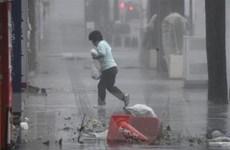 Bão Trami đổ bộ vào Nhật Bản khiến hàng chục người bị thương