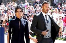 David Beckham sẽ trải nghiệm xe VinFast thương hiệu ôtô Việt đầu tiên