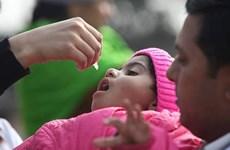 Ấn Độ thu hồi vắcxin phòng bại liệt dạng uống bị nhiễm virus