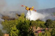 Bồ Đào Nha: Cháy rừng dữ dội tại Công viên tự nhiên Sintra-Cascais