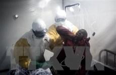 CHDC Congo: Che giấu các trường hợp nghi nhiễm Ebola sẽ bị phạt tù