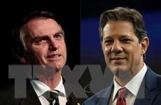 """Brazil: Ứng cử viên cực hữu có thể giúp kết thúc """"kỷ nguyên khó khăn""""?"""