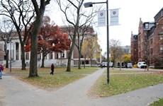 Đại học Harvard hầu tòa do phân biệt đối xử với sinh viên gốc châu Á