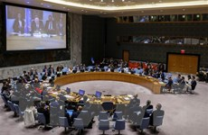 Hội đồng Bảo an Liên hợp quốc thảo luận về tình hình Ukraine