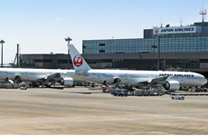 Japan Airlines phải hoãn chuyến bay do phi công phụ lái uống rượu