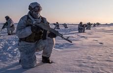 Nga thành lập các đơn vị quân đội độc lập ở Bắc Cực và Crimea