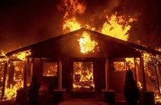 Mỹ: Cháy rừng dữ dội thiêu trụi cả thị trấn, nhiều người mắc kẹt