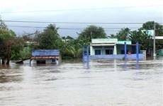 Nhiều vùng trũng ở Ninh Thuận bị cô lập vì ngập sâu trong nước