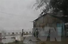 Hoàn lưu bão số 9 gây mưa to trên diện rộng tại Tiền Giang
