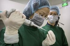 """[Video] Trung Quốc điều tra khẩn thí nghiệm 2 em bé """"biến đổi gen"""""""