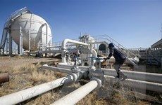 Tổng thống Mỹ Donald Trump kêu gọi OPEC không giảm sản lượng