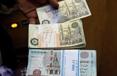 Ai Cập chuẩn bị phát hành đồng bảng polymer vào năm 2020