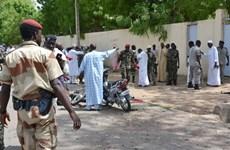 Quân đội CH Chad bắt giữ hơn 250 phần tử nổi dậy ở miền Bắc