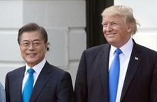Lãnh đạo Hàn, Mỹ sớm điện đàm về Hội nghị thượng đỉnh Mỹ-Triều lần 2