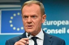 24 nhà lãnh đạo EU sẽ tham dự Hội nghị thượng đỉnh EU-AL tại Ai Cập