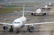 Hãng hàng không Air India nhận được cuộc gọi đe dọa cướp máy bay
