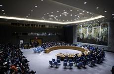 Thượng viện Nga coi việc sử dụng vũ lực chống Venezuela là xâm lược