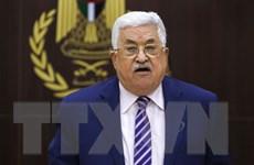 Lãnh đạo Palestine và Iraq thảo luận về vấn đề Jerusalem