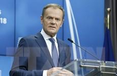 Lực lượng bài châu Âu tìm cách tác động các cuộc bỏ phiếu của EU