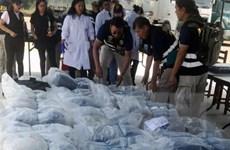 Cảnh sát Peru triệt phá đường dây buôn bán hơn 2,1 tấn cocaine
