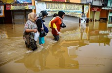 [Video] Lũ quét tại Indonesia, hàng chục thi thể tìm thấy trong bùn