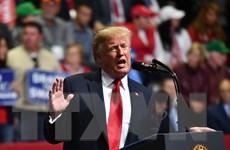 Chuyển hồ sơ điều tra chiến dịch tranh cử của Tổng thống Trump