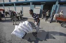 Các nước giàu chú trọng ngân sách viện trợ cho lợi ích quốc gia