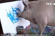 [Video] Mẫu đồng hồ đắt khách của Swatch được vẽ bởi một cô lợn