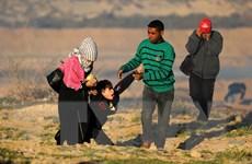 Phong trào Hamas ra lệnh chấm dứt các cuộc tấn công ở Gaza