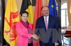Thúc đẩy hợp tác các địa phương của Việt Nam và vùng Wallonie của Bỉ
