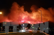Chưa có thông tin về người Việt trong vụ hỏa hoạn ở Gangwon