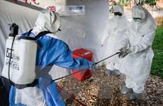 Đại dịch Ebola ở CHDC Congo đang lây lan ngày càng nhanh