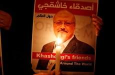 Thổ Nhĩ Kỳ bắt giữ 2 điệp viên của Các tiểu vương quốc Arab thống nhất