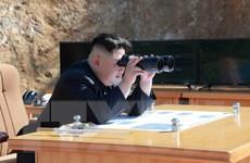 Hàn Quốc: Vũ khí mới của Triều Tiên không phải tên lửa đạn đạo